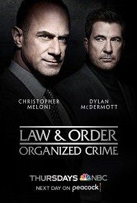 Фильм Закон и порядок: Организованная преступность (1 сезон)
