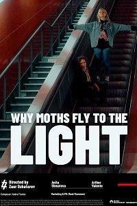 Почему мотыльки летят на свет? (Чому метелики летять на світло?) (2020)