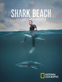 Фильм Акулий пляж с Крисом Хемсвортом (2021)