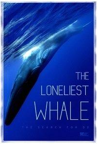 Фильм Самый одинокий кит на планете: в поисках Пятидесятидвухгерцового кита (2021)