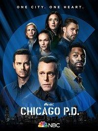 Фильм Полиция Чикаго (9 сезон)